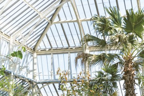 The Temperate House at Kew Gardens reopened in April 2018 after major restoration.
