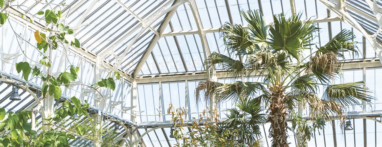 The Temperate House at Kew Gardens reopened in April 2018 after major restoration © Jérémie Souteyrat