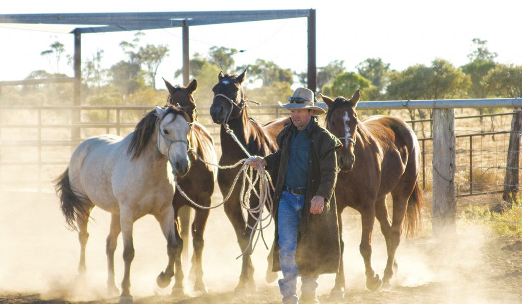 L'Outback. Non loin de la mer, les cow-boys de la côte est.