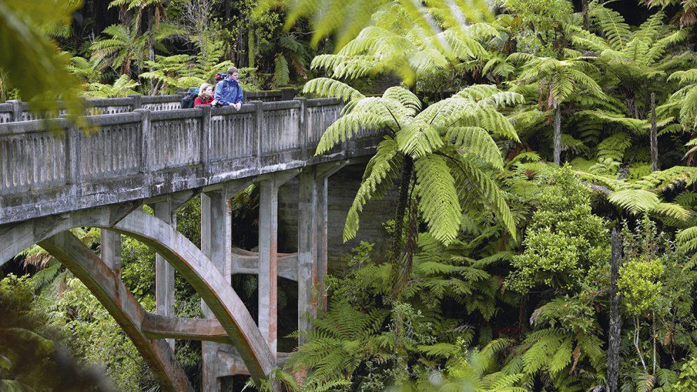 Le Parc national Whanganui. Des soldats néo-zélandais rentrés de la Première Guerre mondiale s'installèrent comme fermiers sur ces terres. Les maisons ont disparu, reste le pont.
