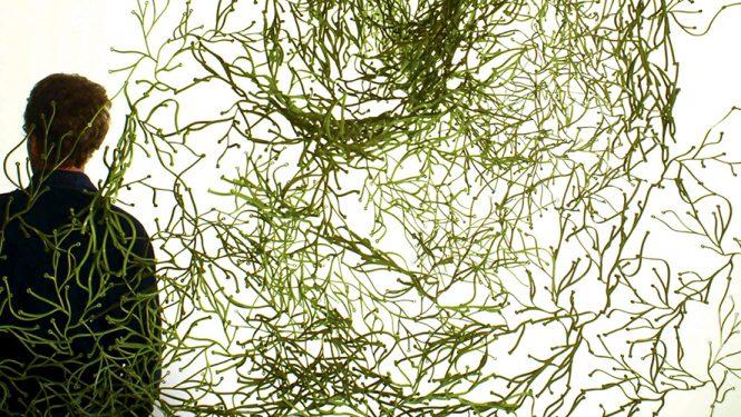 Créées pour Vitra, les « Algues » sont un des objets iconiques de la production Bouroullec. Conçus pour pouvoir s'assembler facilement et sans outils, ces modules ont remporté un succès planétaire et se sont vendus à plusieurs millions d'exemplaires.