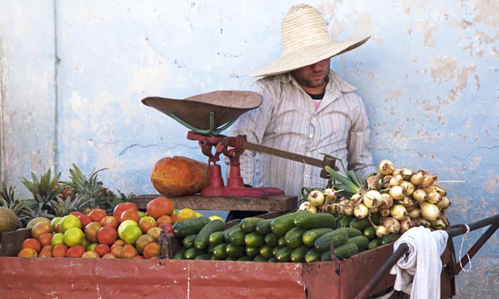 « Nous faisons semblant de travailler et l'État fait semblant de nous payer. » La nonchalance affichée des Cubains masque leurs difficultés à survivre au quotidien dans une économie de la pénurie.