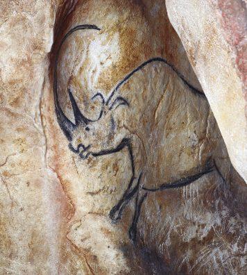 Caverne du Pont d'Arc, réplique de la Grotte Chauvet, France. Rhinocéros sortant de la paroi.
