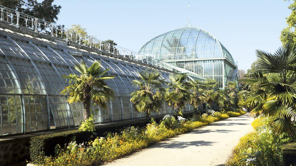 Les serres d'Auteuil, Paris. Datant de 1898, la grande nef du palmarium mesure 100 mètres et abrite trois zones climatiques.