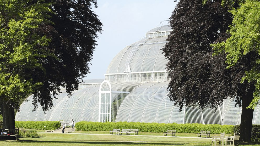 La serre aux palmiers des Royal Botanic Gardens de Kew, Londres. Vues extérieure de la coursive du corps central de la serre. Kew Garden renferment d'autres serres magnifiques.
