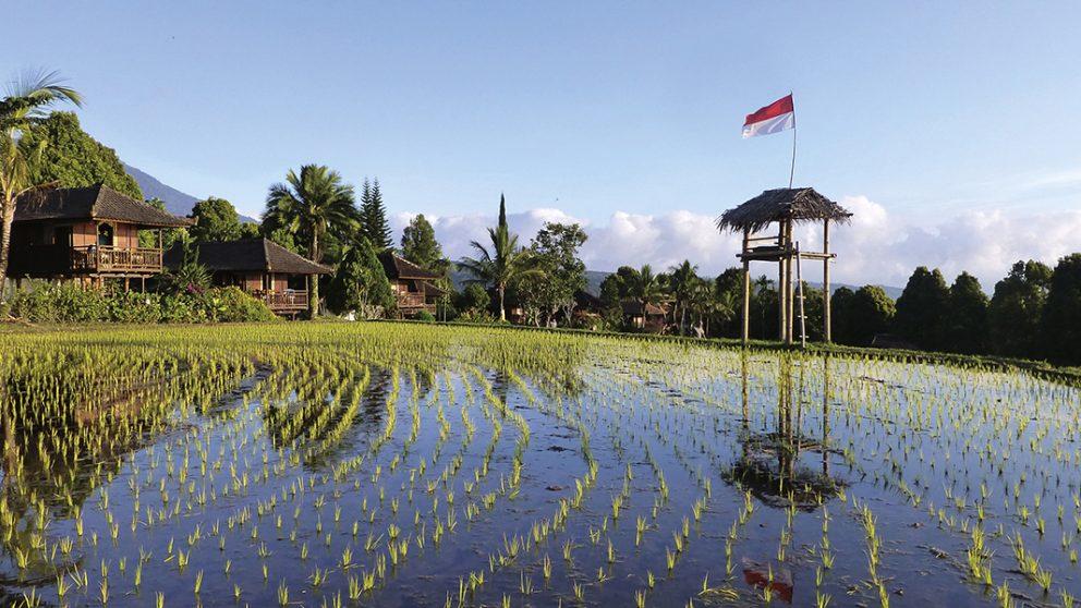 Habitations traditionnelles au centre de Bali. Tout autour, les rizières de Munduk forment une sorte de barrière naturelle.