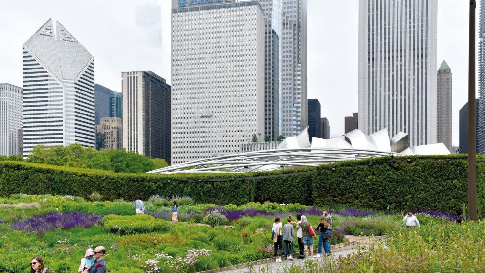 Le paysagiste Piet Oudolf. Le Lurie Garden de Chicago.